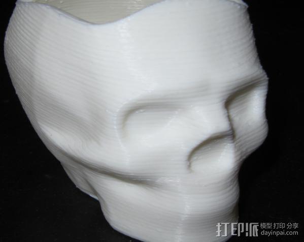 骷髅头花盆 3D模型  图3