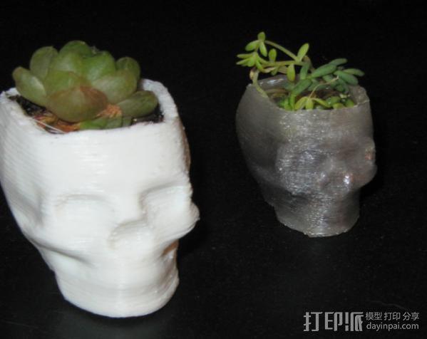 骷髅头花盆 3D模型  图5