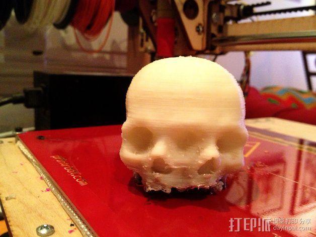 三头连体婴头骨模型 3D模型  图2
