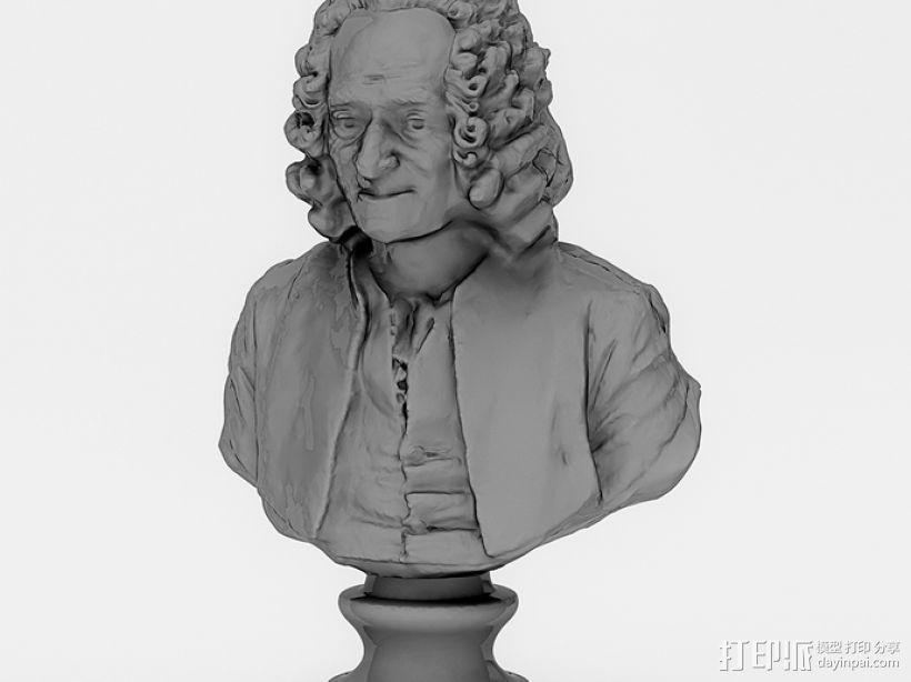 伏尔泰 3D模型  图4