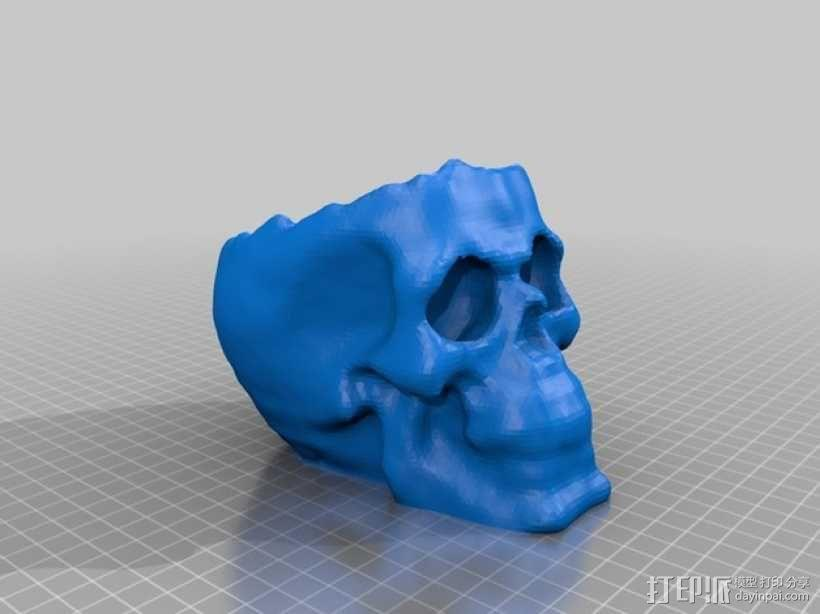骷髅头 头骨模型 3D模型  图1