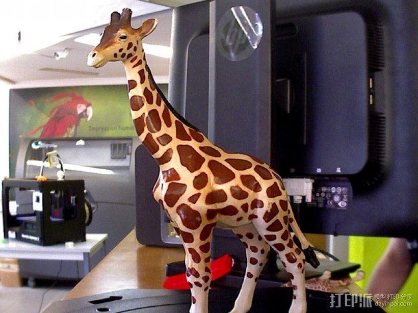 长颈鹿 3D模型  图1