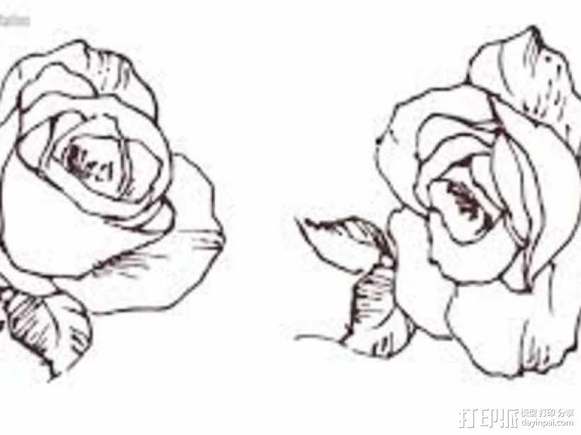 玫瑰花 3D模型  图7