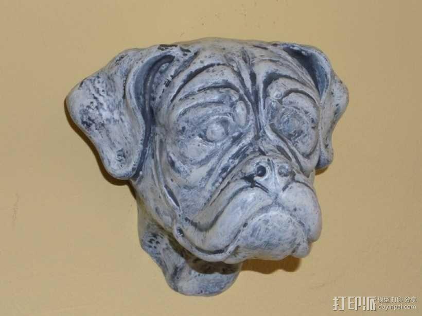 拳师犬头部模型 3D模型  图4