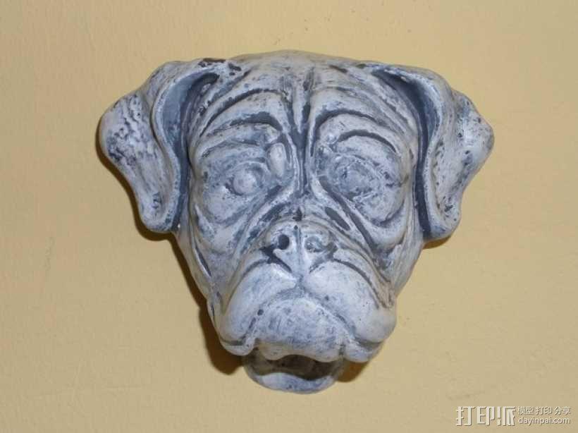 拳师犬头部模型 3D模型  图5
