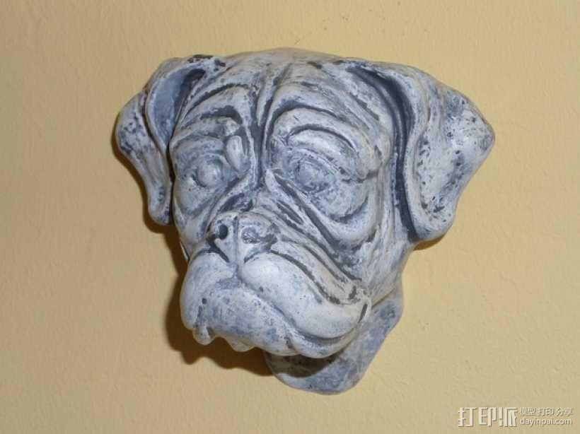 拳师犬头部模型 3D模型  图6