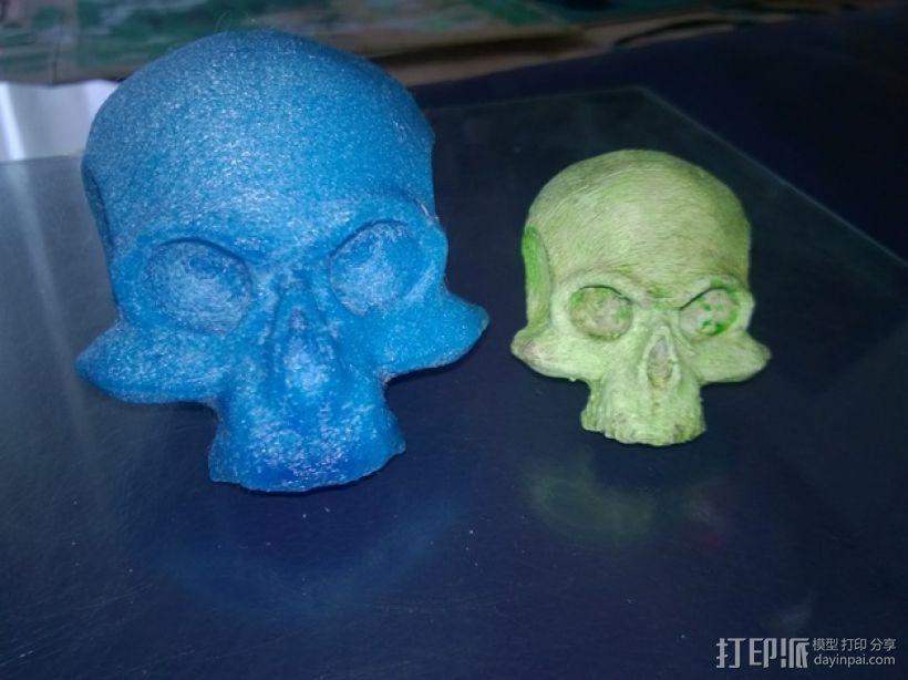 骷髅头 头骨 3D模型  图2