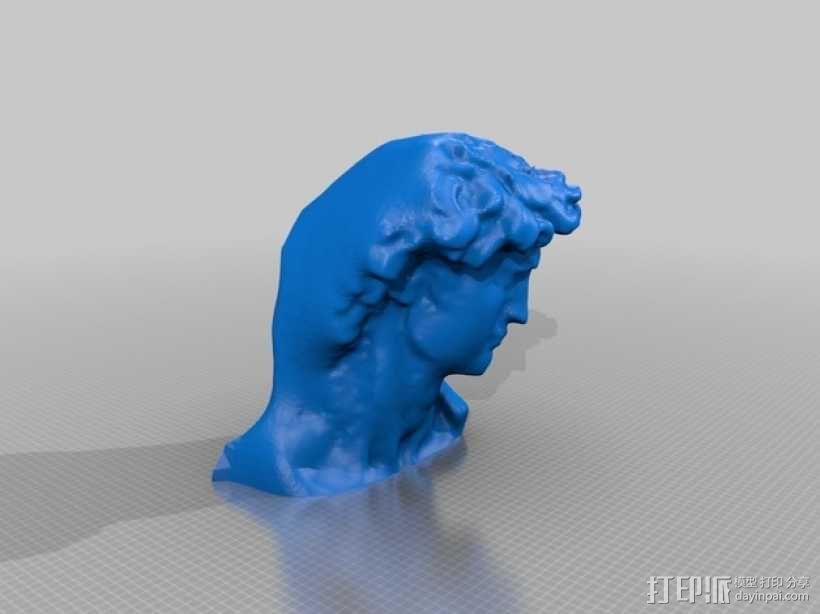 大卫头像 3D模型  图1