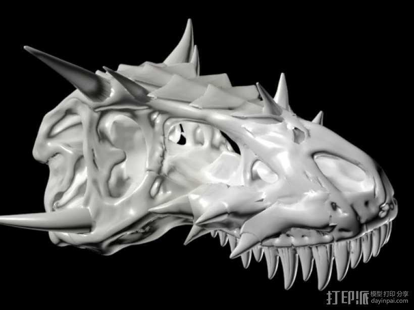 霸王龙 头骨 3D模型  图1
