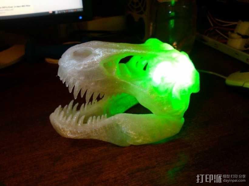 会发光的霸王龙头骨 3D模型  图6