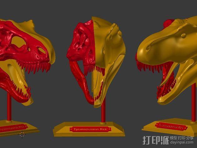 双色恐龙头骨 3D模型  图2
