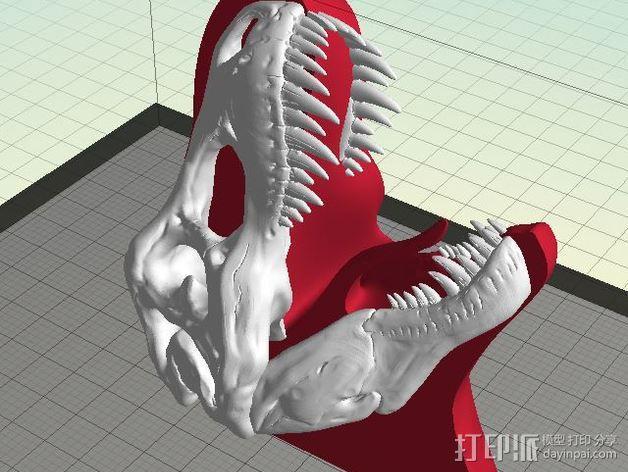 双色恐龙头骨 3D模型  图6