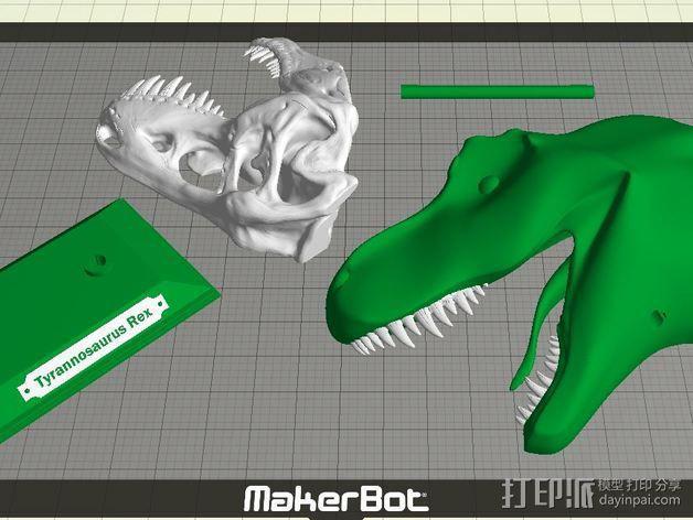 双色恐龙头骨 3D模型  图7