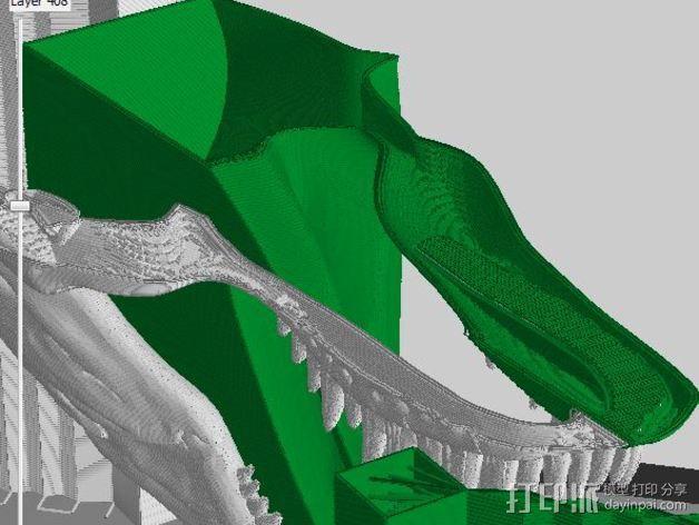 双色恐龙头骨 3D模型  图9