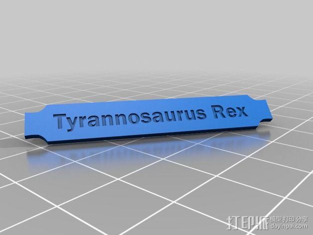 双色恐龙头骨 3D模型  图12
