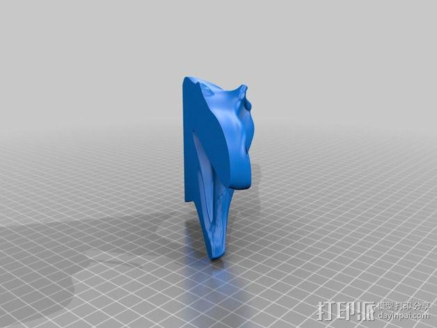 双色恐龙头骨 3D模型  图13