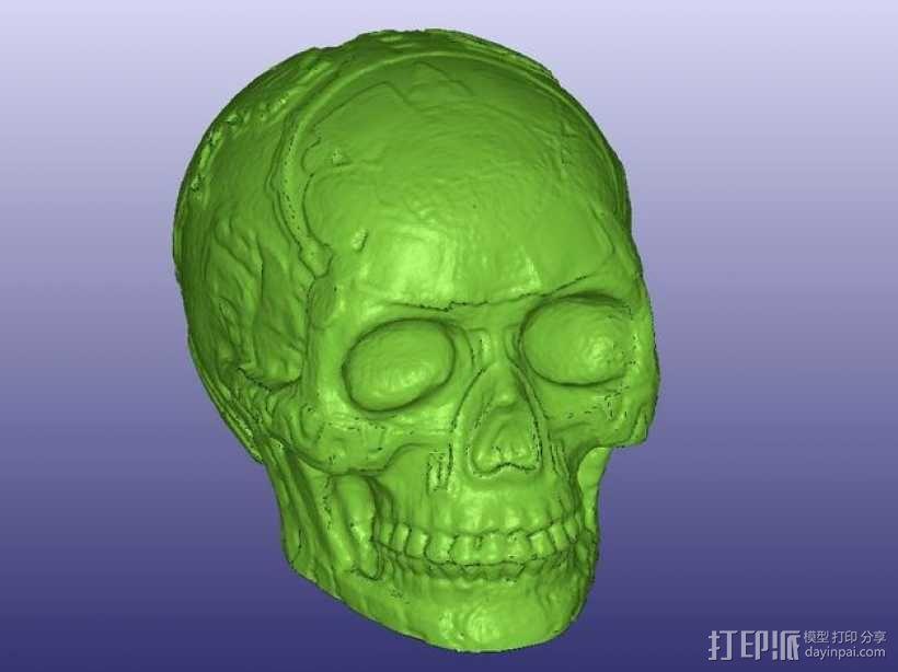 玛雅人的头骨 3D模型  图1