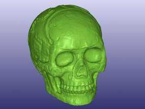 玛雅人的头骨 3D模型
