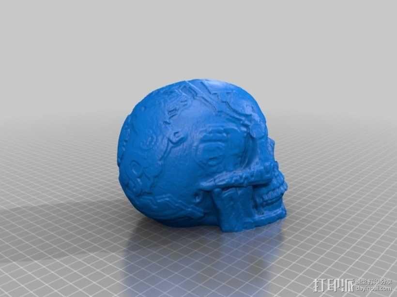 玛雅人的头骨 3D模型  图2