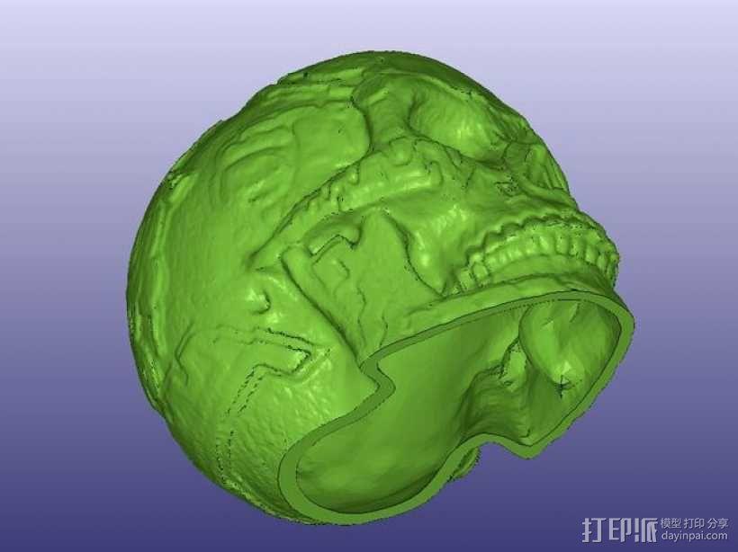 玛雅人的头骨 3D模型  图3