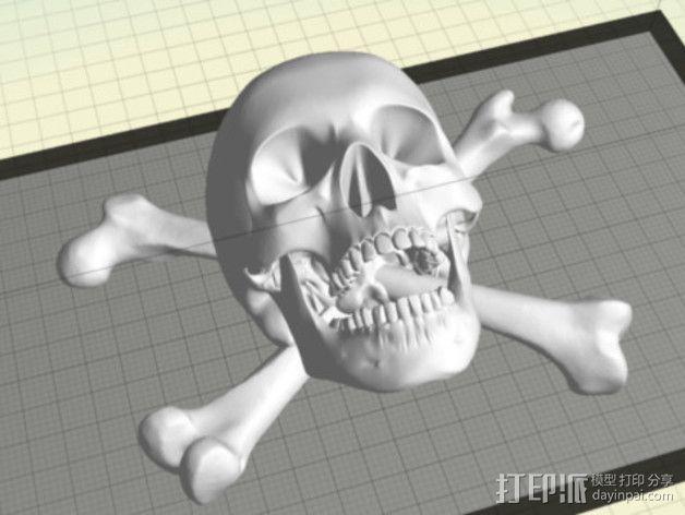 海盗旗 墙面装饰 3D模型  图1