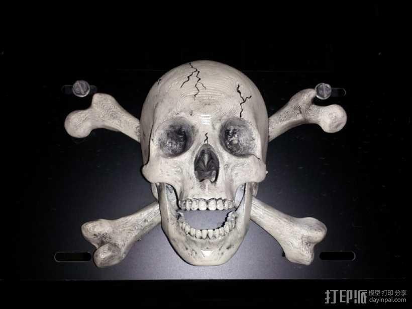 海盗旗 墙面装饰 3D模型  图2