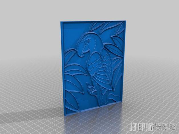 鹦鹉 3D模型  图2