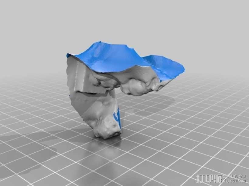 路易斯 布龙尼亚 半身像 3D模型  图3