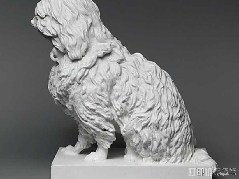 马耳他狗 3D模型  图1