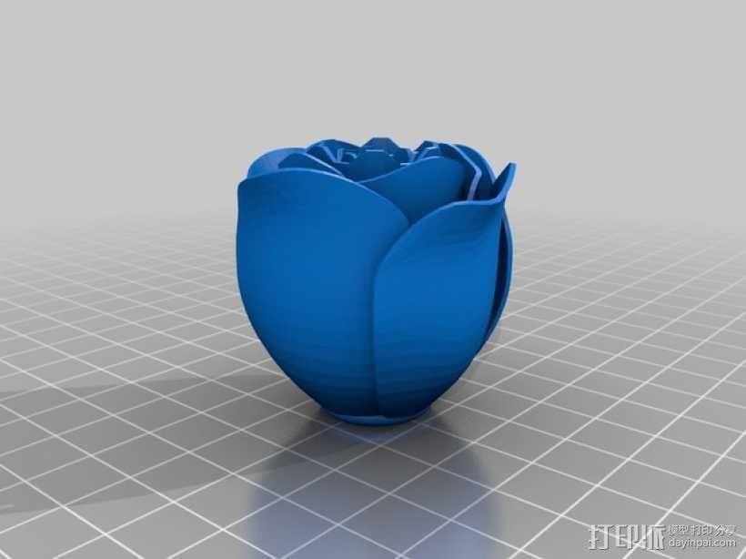 带刺玫瑰 3D模型  图7