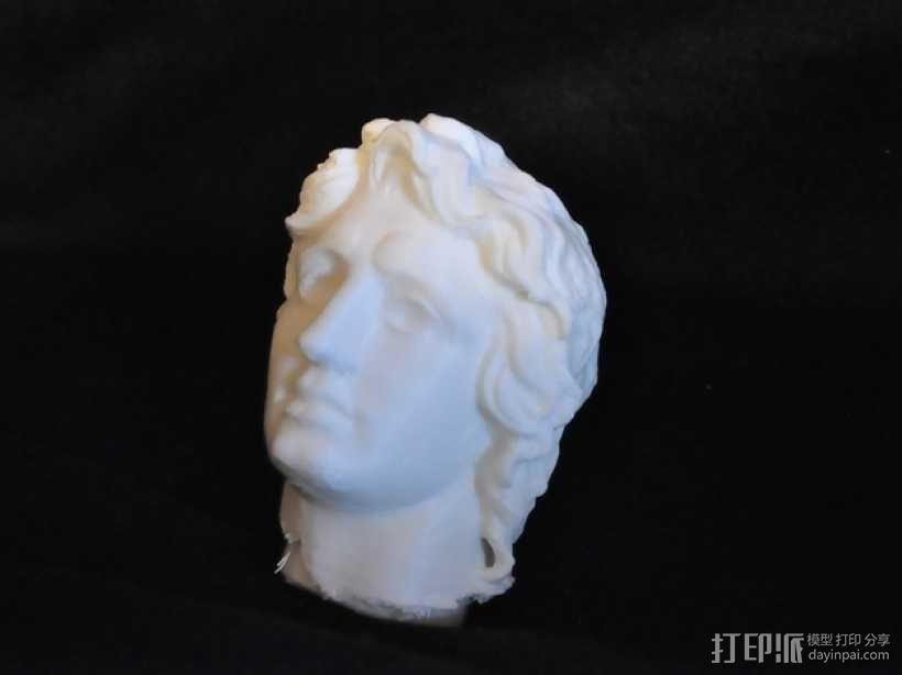 亚历山大 头像 3D模型  图1