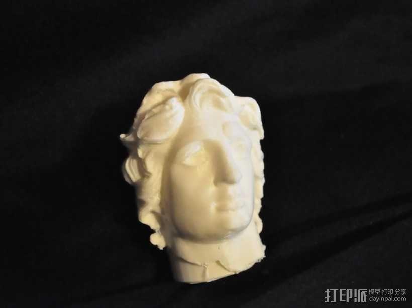 亚历山大 头像 3D模型  图3