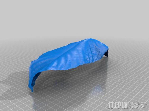 树叶 3D模型  图1