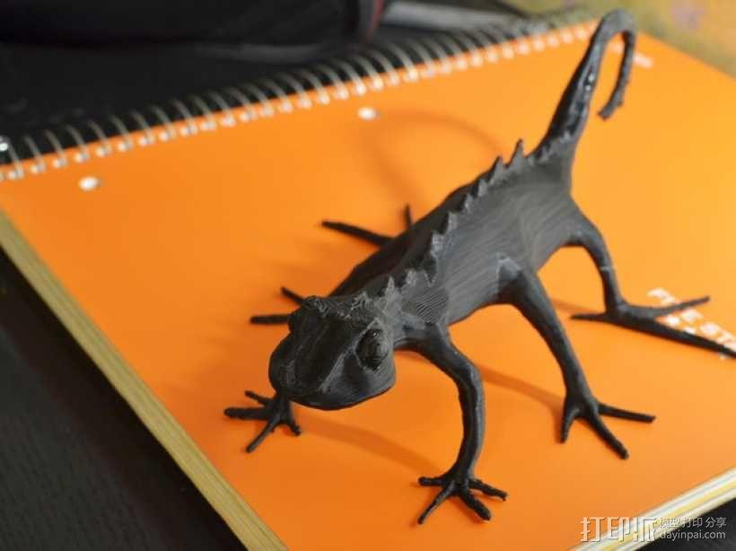 蜥蜴 3D模型  图1