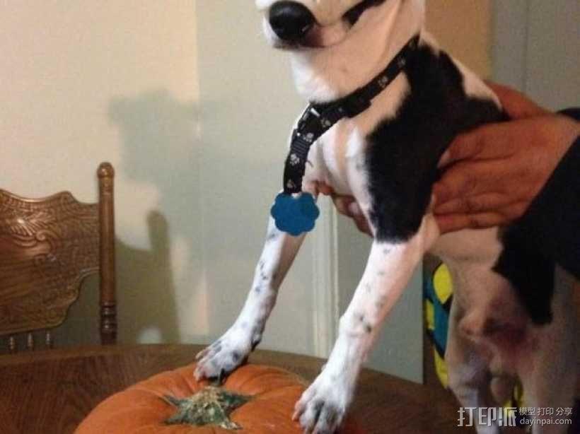 狗狗面具 3D模型  图2