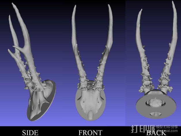 鹿角奖杯 3D模型  图3