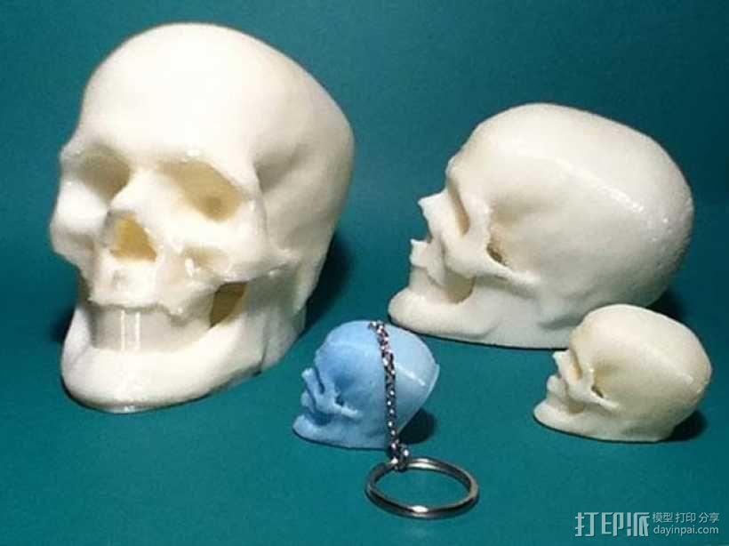 骷髅头 钥匙扣 3D模型  图1