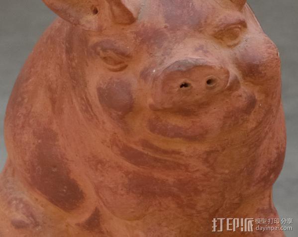 小猪 3D模型  图5