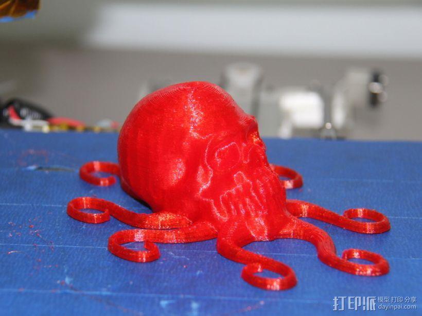 骷髅头 章鱼触角 3D模型  图1