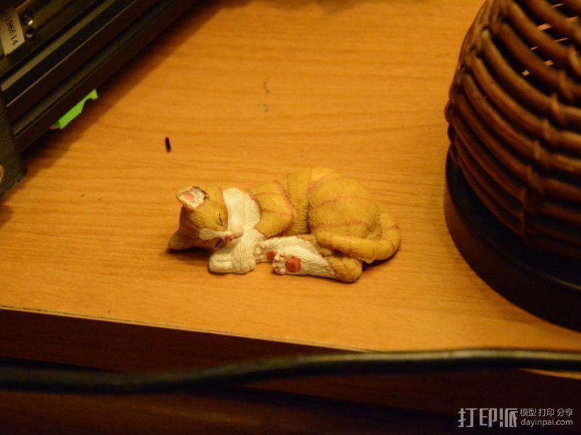 沉睡中的小猫 3D模型  图1