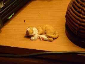 沉睡中的小猫 3D模型