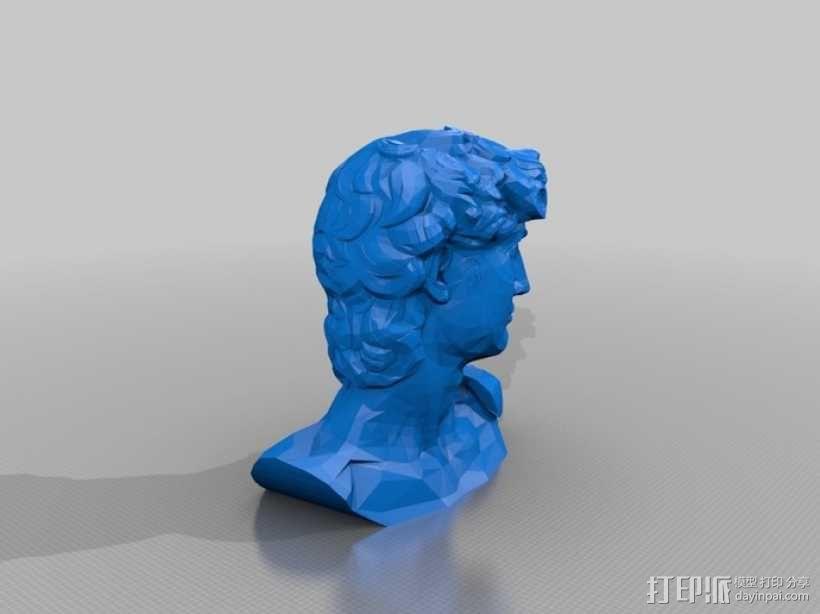 大卫 头像 3D模型  图2