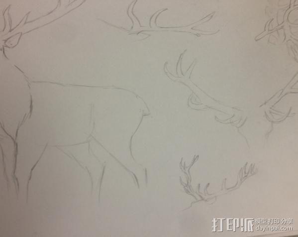 公鹿 3D模型  图2