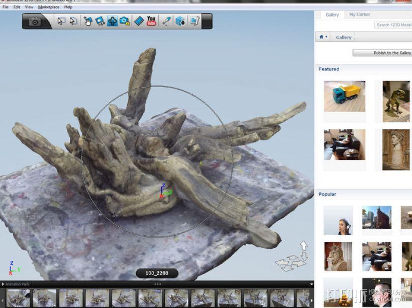 浮木  3D模型  图1