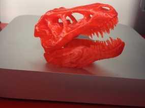 红色的 霸王龙 骨架 3D打印制作