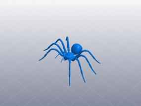 节肢动物 蜘蛛 3D模型