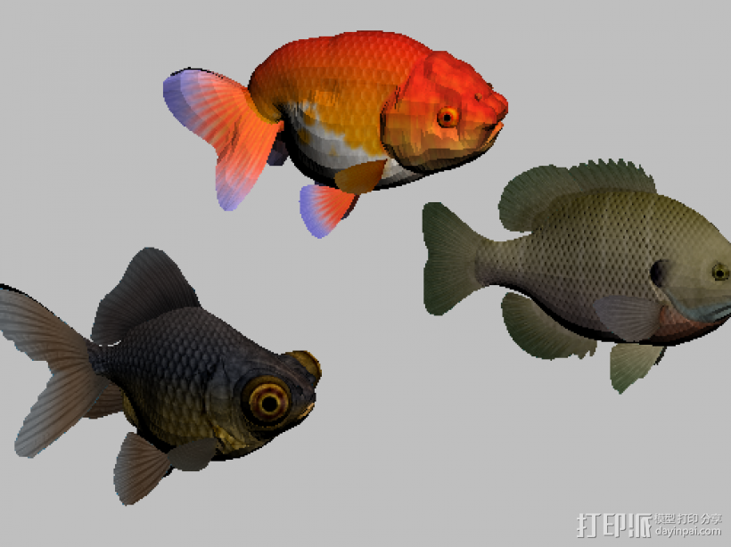 三只金鱼 3D模型  图1