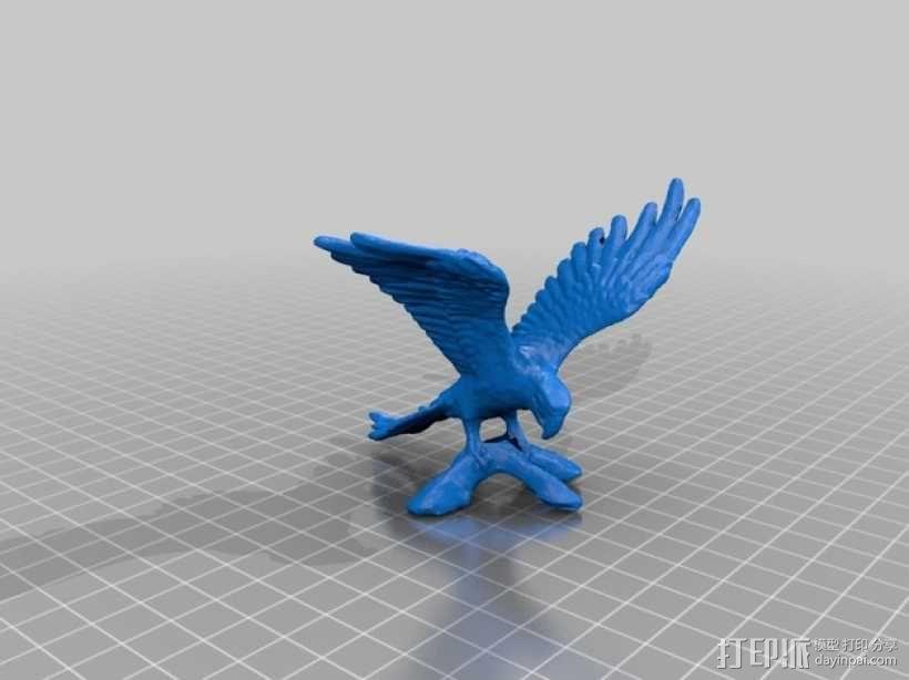 鹦鹉 3D模型  图1