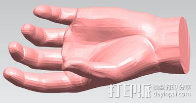 仿真手 3D模型  图2