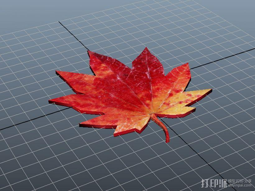 枫叶书签 3D模型  图2